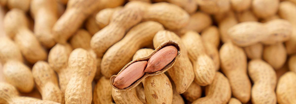 皮付きピーナッツ